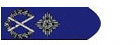 Senior Assistant Commissioner's Rank Badge